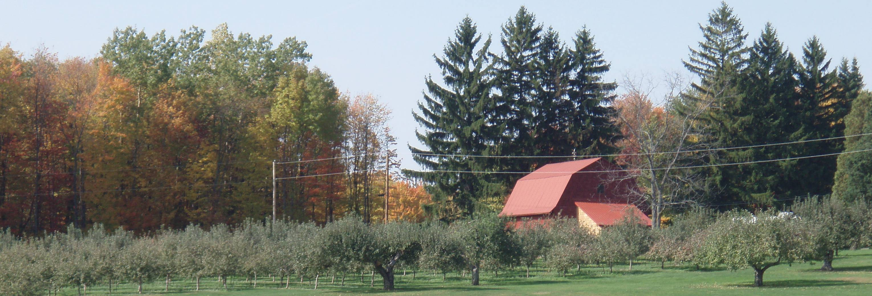 Davenport Fruit Farm