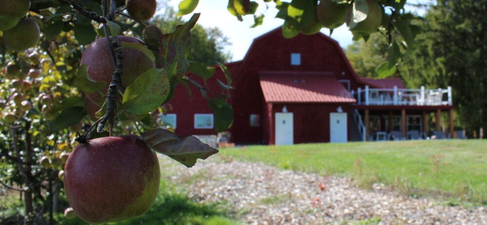 Davenport Cidery & Winery